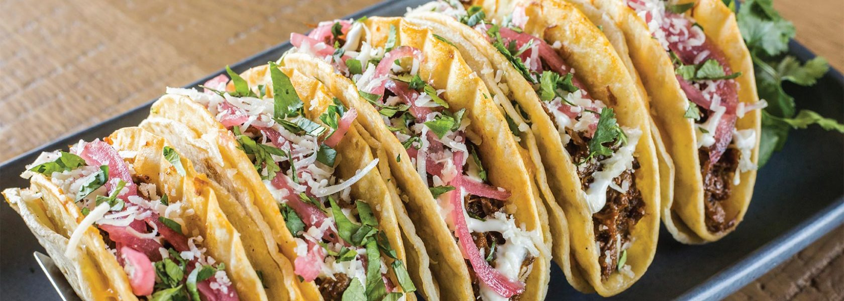 Row of fresh tacos standing side by side
